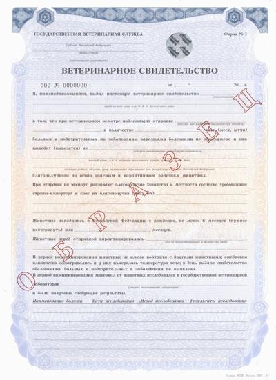 http://sf.uploads.ru/1I9Gq.jpg