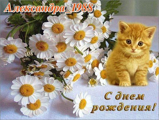 http://sf.uploads.ru/8brhS.jpg