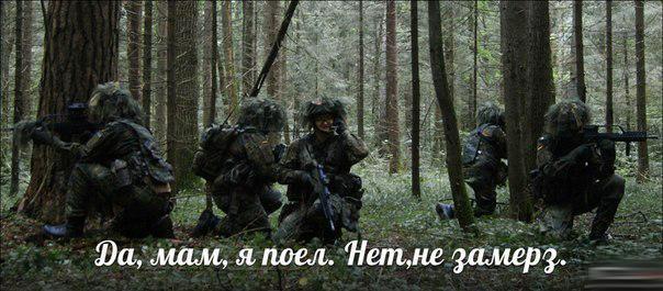 http://sf.uploads.ru/A185N.jpg