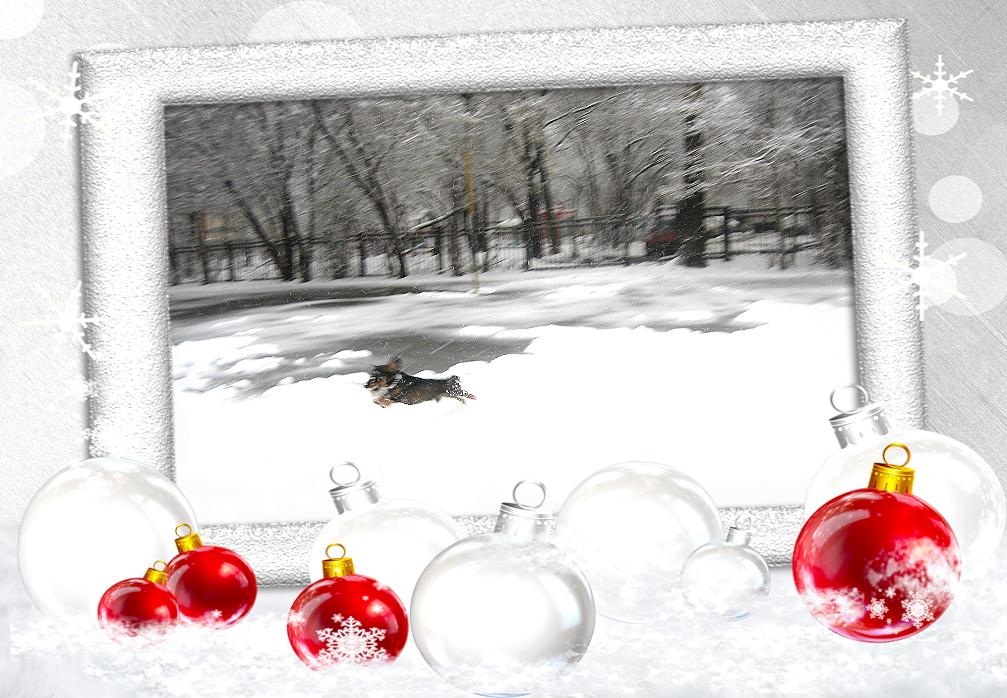 http://sf.uploads.ru/Cip9g.jpg