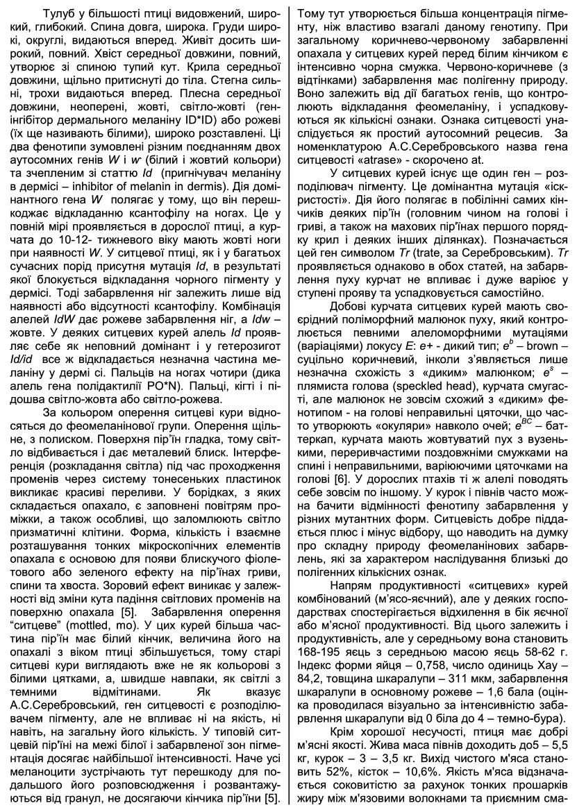 Полтавская ситцевая популяция кур - Страница 5 Cwp00