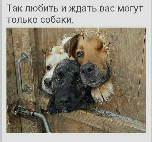 http://sf.uploads.ru/DWFEY.jpg
