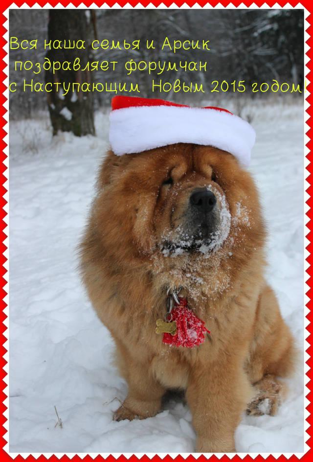 http://sf.uploads.ru/GW8nQ.jpg