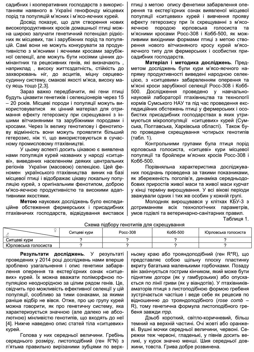 Полтавская ситцевая популяция кур - Страница 5 GfzM7