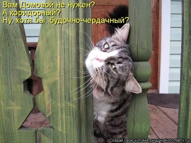 http://sf.uploads.ru/L2D1C.jpg