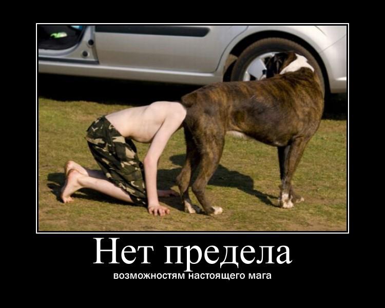 http://sf.uploads.ru/LVtXb.jpg