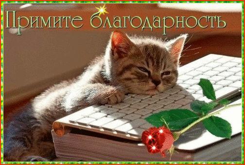 http://sf.uploads.ru/LgiKf.jpg