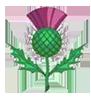 Айлей. Символ Школы Дагона - чертополох