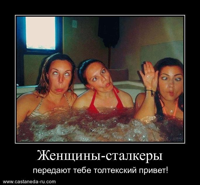 http://sf.uploads.ru/Qih8s.jpg