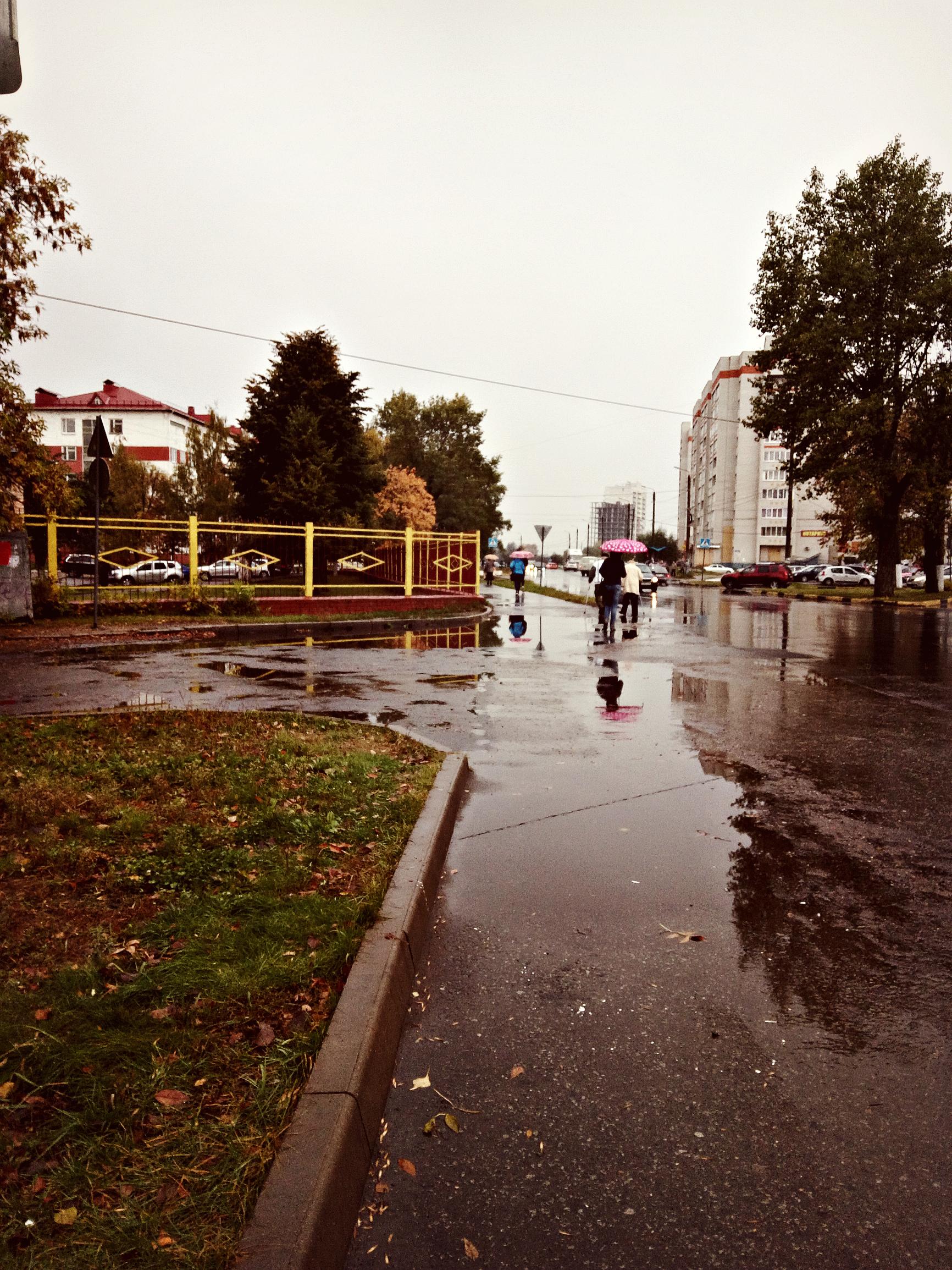 http://sf.uploads.ru/R42E9.jpg