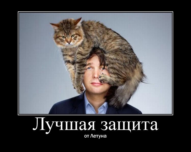 http://sf.uploads.ru/RgXkj.jpg