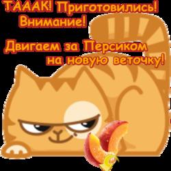 http://sf.uploads.ru/SOtZY.png
