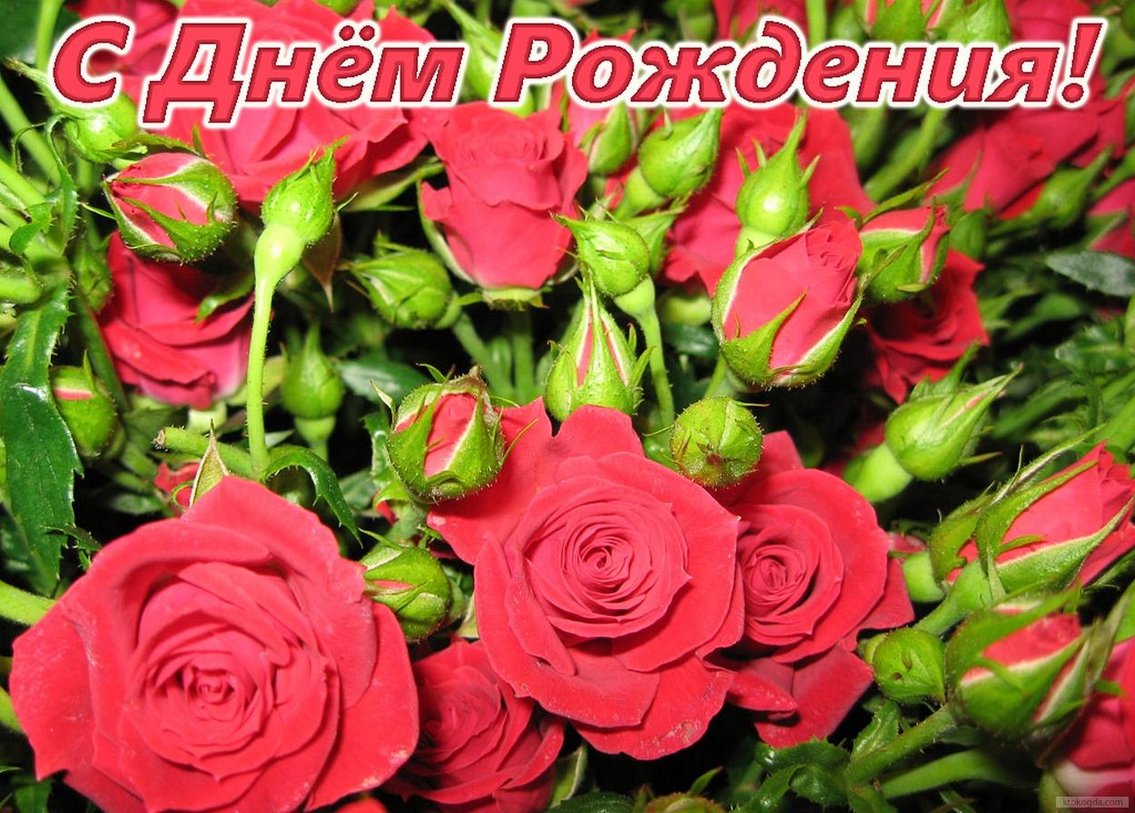http://sf.uploads.ru/TvkCP.jpg