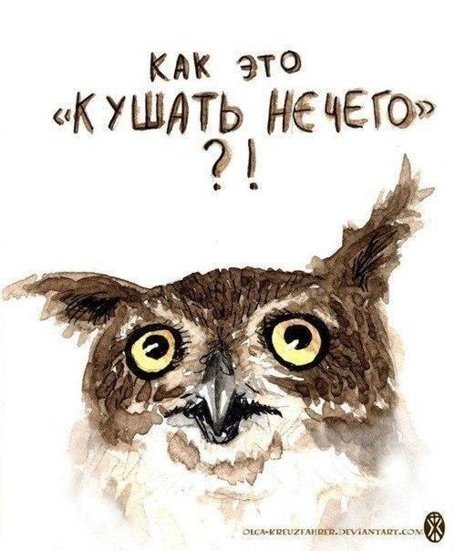 http://sf.uploads.ru/VAlwQ.jpg
