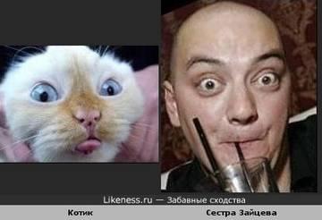 http://sf.uploads.ru/Y47iH.jpg