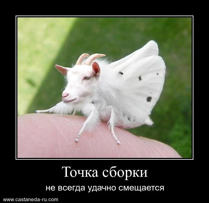 http://sf.uploads.ru/YMmet.jpg