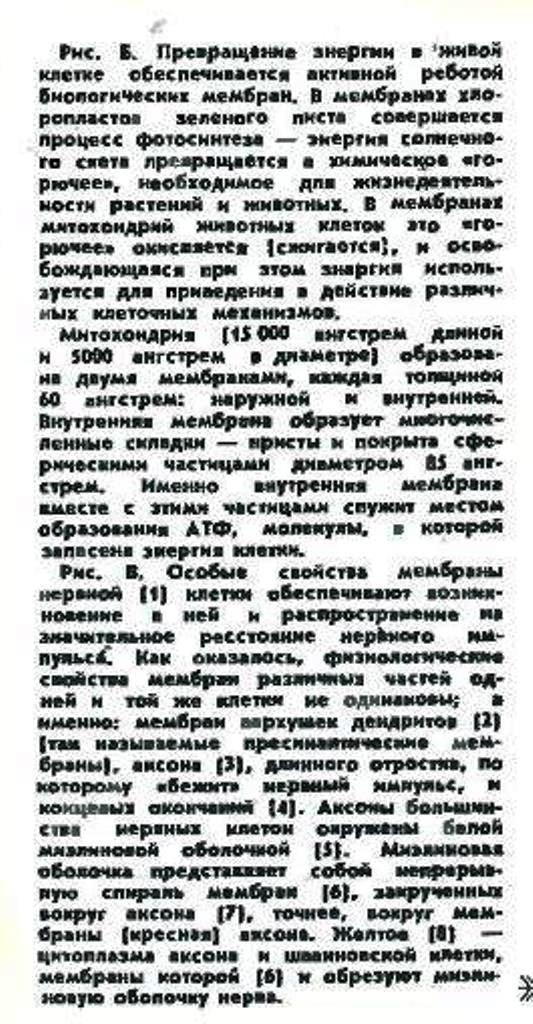 http://sf.uploads.ru/coWjZ.jpg