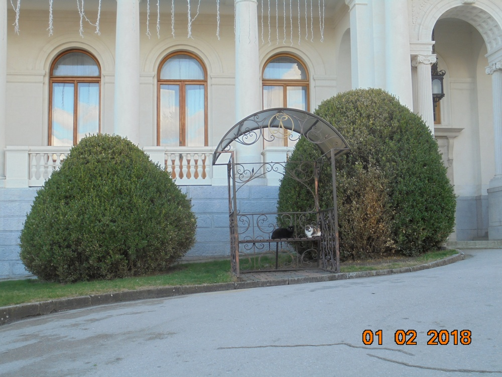 http://sf.uploads.ru/d6BGA.jpg