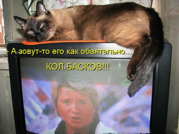 http://sf.uploads.ru/hxODp.jpg