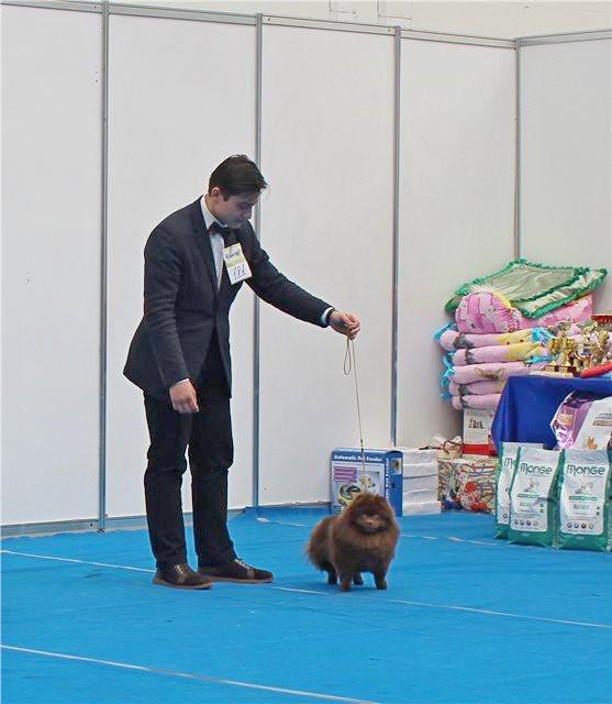http://sf.uploads.ru/jiaoG.jpg