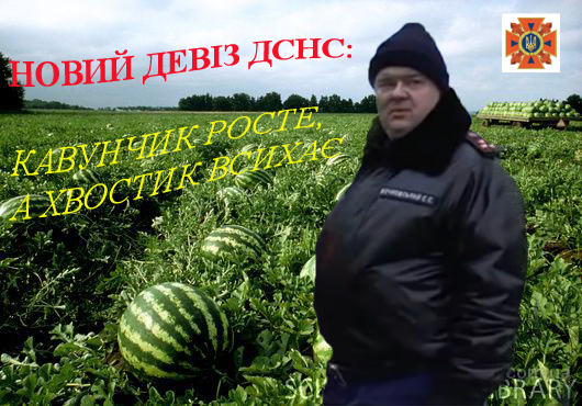 http://sf.uploads.ru/mTwW9.jpg