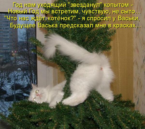 http://sf.uploads.ru/mtGba.jpg