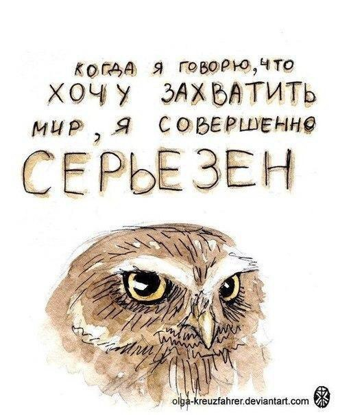http://sf.uploads.ru/rP8E2.jpg