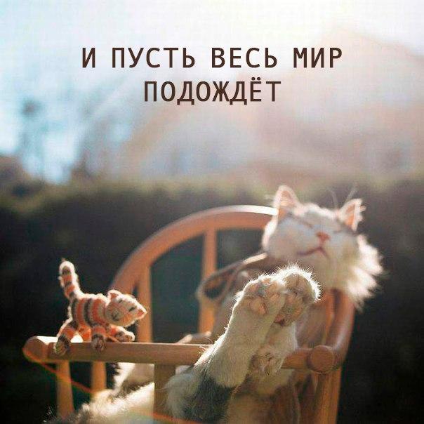 http://sf.uploads.ru/shULG.jpg