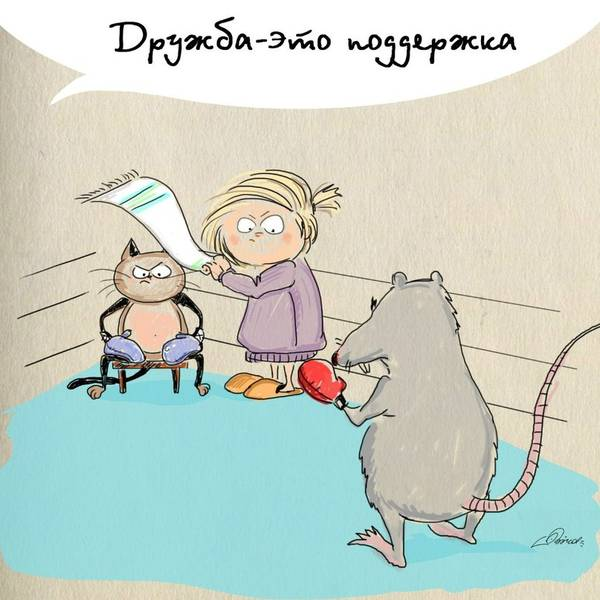 http://sf.uploads.ru/t/0zNZc.jpg