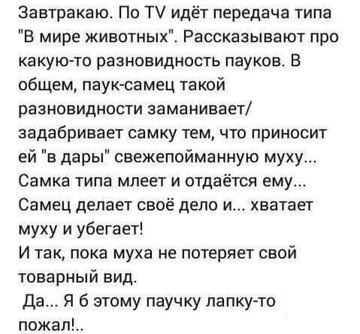 http://sf.uploads.ru/t/198qL.png