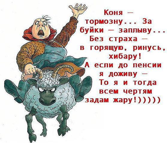 http://sf.uploads.ru/t/1yRr6.jpg
