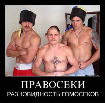 http://sf.uploads.ru/t/3DS2p.jpg