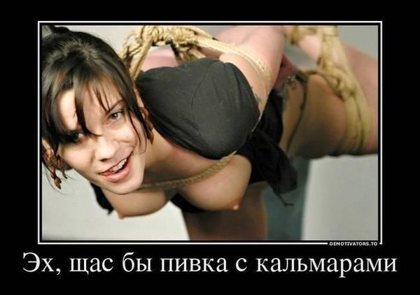 http://sf.uploads.ru/t/3SNOl.jpg
