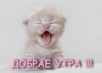 http://sf.uploads.ru/t/3ToSg.jpg