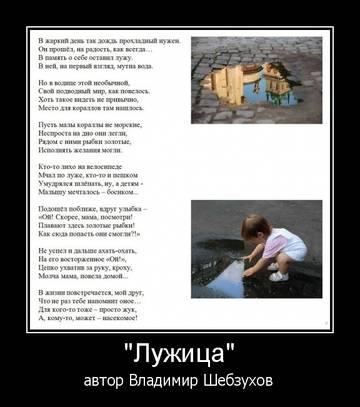 http://sf.uploads.ru/t/3bUxh.jpg