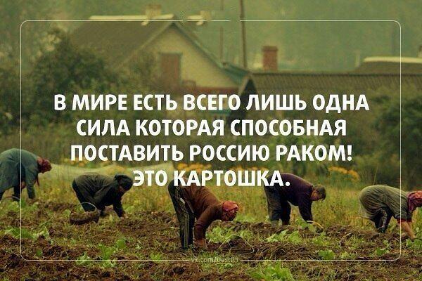 http://sf.uploads.ru/t/4KvGR.jpg