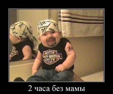 http://sf.uploads.ru/t/5SyWq.jpg