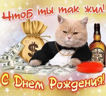 http://sf.uploads.ru/t/5hkoZ.jpg