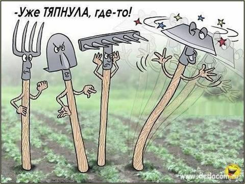 http://sf.uploads.ru/t/5s6IL.jpg