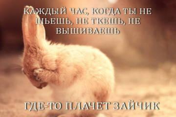 http://sf.uploads.ru/t/6AlKE.jpg