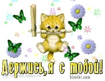 http://sf.uploads.ru/t/6fUCL.jpg
