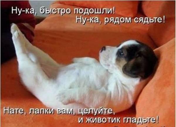 http://sf.uploads.ru/t/7MgdV.jpg