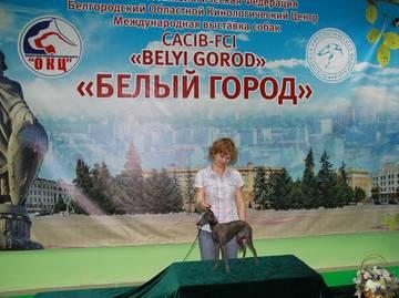http://sf.uploads.ru/t/8NiZA.jpg