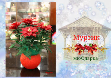http://sf.uploads.ru/t/8PrcX.jpg