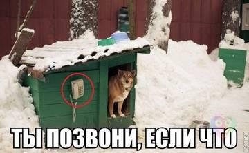 http://sf.uploads.ru/t/8TPs5.jpg