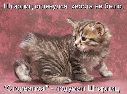 http://sf.uploads.ru/t/97Nof.jpg