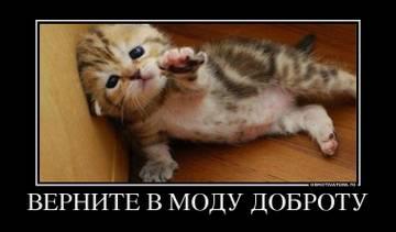 http://sf.uploads.ru/t/9QWz3.jpg