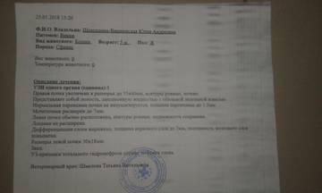 http://sf.uploads.ru/t/CoykY.jpg
