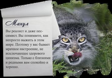 http://sf.uploads.ru/t/DHrYg.png