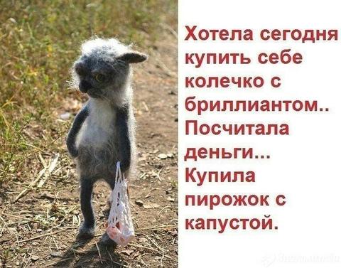 http://sf.uploads.ru/t/ERyQ7.png